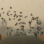 delhi-pollution eye problem